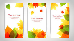 Vector illustration of Autumn leafs back Stock Image