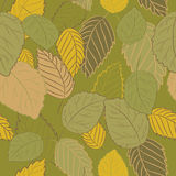 Vector illustration of autumn leaves on green background. Seamless pattern. Hand drawn autumn leaves on green background. Seamless pattern. Green, brown and stock illustration