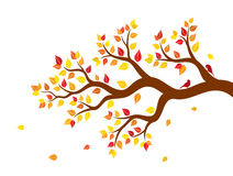 Vector illustration of autumn tree branch with colorful leaves and two birds. On white background vector illustration