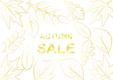Vector illustration of autumn tree with Golden leaves vector illustration
