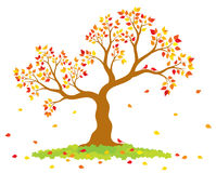 Vector illustration of autumn tree with yellow, red, orange leaves and birds Royalty Free Stock Photos