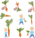 Carrot in the hand of the child, vector illustration of a carrot. Vector illustration of a baby holding a carrot in one hand carrot in one hand, a separate image Stock Photography