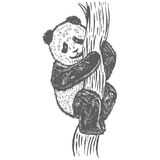 Vector illustration of baby panda Stock Images