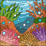Vector illustration, background (coral reef) Royalty Free Stock Photo