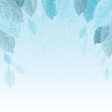 Vector illustration background of leaves in frost. Royalty Free Stock Photography