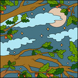 Vector illustration, background (night forest) Stock Photo