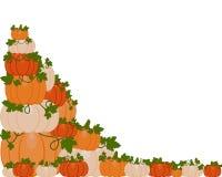 Vector illustration of a background of orange and white pumpkins vector illustration