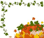 Vector illustration of a background of orange and white pumpkins stock illustration