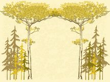 Vector illustration background with pines Royalty Free Stock Image