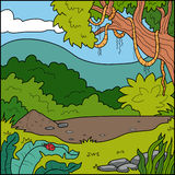 Vector illustration, background (tropical forest) Stock Photos