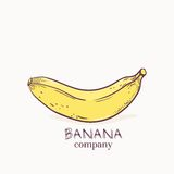 Vector illustration of banana logo template Royalty Free Stock Images