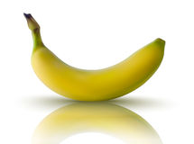 Vector illustration of banana with reflection Royalty Free Stock Image