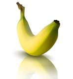 Vector illustration of banana with reflection Stock Photo