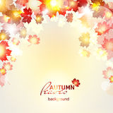 Vector illustration of beautiful autumn background. With sun rays and maple leaves Royalty Free Stock Photo
