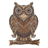 Vector illustration of beautiful decorative owl with a lot of de Royalty Free Stock Images