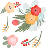 Vector illustration of beautiful flowers Stock Image