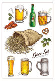 Vector  illustration with   beer  set Stock Image