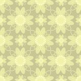 Vector illustration of beige flowers Royalty Free Stock Image