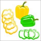 Vector illustration of bell pepper Stock Image