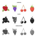 Vector illustration of berry and fruit logo. Collection of berry and redberry  stock vector illustration. Isolated object of berry and fruit icon. Set of berry royalty free illustration