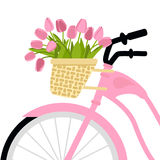 Vector illustration with bicycle and tulips Stock Photos