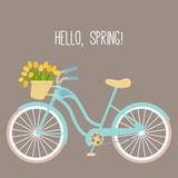 Vector illustration with bicycle and tulips Stock Photo