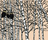 Vector image of owls in the birch forest. Vector illustration of birch grove in the cold season royalty free illustration