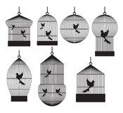 Bird cages. Vector illustration of the Bird cages vector illustration