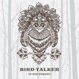 Vector Illustration Bird Talker on White background. Royalty Free Stock Image