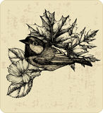 Vector illustration of the bird titmouse, leaves. Royalty Free Stock Photo