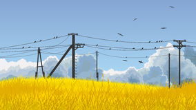 Vector illustration of birds in sky and on power line. Horizontal illustration field of yellow grass, blue sky with clouds and birds on power line Royalty Free Stock Images