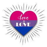 Bisexual heart on white background Royalty Free Stock Images
