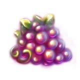 Vector illustration of black grape Royalty Free Stock Photos