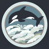 Vector illustration of a black killer whale. Swimming in colorful waves Stock Photos