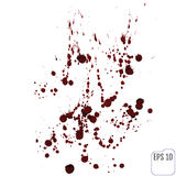 Vector illustration of blood splatter,  on white backgro Royalty Free Stock Photo