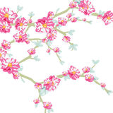 Vector illustration blooming flowers on tree branch Stock Image