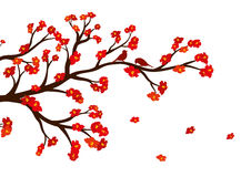 Vector illustration of blossom tree branch with red flowers. Royalty Free Stock Photography