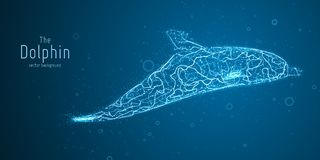 Vector illustration of blue geometric dolphin constructed with branching lines. Abstract vector of dolphin in the form. Of a mystic silhouette with points and Stock Photography