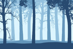 Vector illustration of blue tree trunks with branches in forest Royalty Free Stock Images