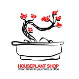 Vector illustration of bonsai for housplant shop stock photo