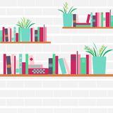 Vector illustration of bookshelves with retro style books Royalty Free Stock Photos