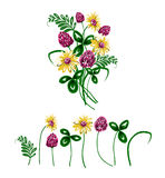 Vector illustration of bouquet made from wildflowers. Royalty Free Stock Images