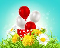 Box with balloons in the grass with daisies and dandelions. Vector illustration of a box with balloons in the grass with daisies and dandelions Stock Photography