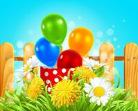 Box with balloons in the grass with daisies and dandelions. Vector illustration of a box with balloons in the grass with daisies, dandelions and camomile Stock Images