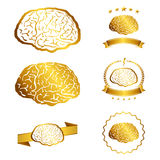 Vector illustration of brain designs iconic, ideas, memory, education, Royalty Free Stock Photos