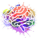 Vector illustration brain on watercolor background EPS 10 Stock Images