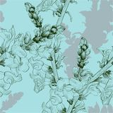 Vector illustration. A branch with flowers and buds. Seamless pattern.Antirrhinum. vector illustration