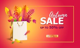 Vector illustration of bright bouquet of yellow and red autumn fallen leaves in gift paper shopping bag. royalty free illustration