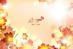 Vector illustration of bright Sunny autumn Stock Photography