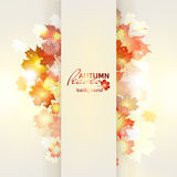 Vector illustration of bright Sunny autumn. Background with Golden leaves. Abstract background with natural maple leafs Stock Photography